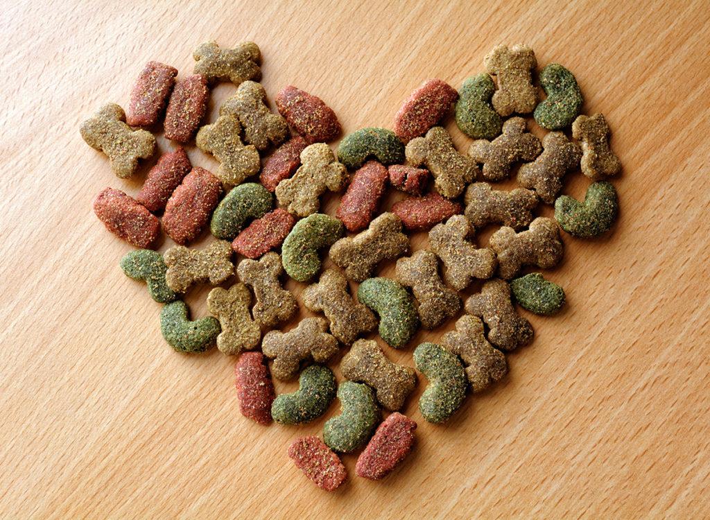 Alimentação para Cães – Tipos de ração