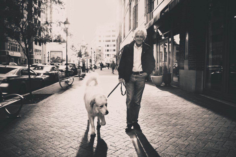 Remédio para Artrose em Cães – Opções de Tratamento