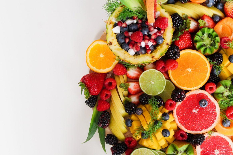 Veterinário Nutricionista – Quais suas Especialidades?